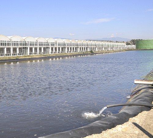 Gestione delle acque