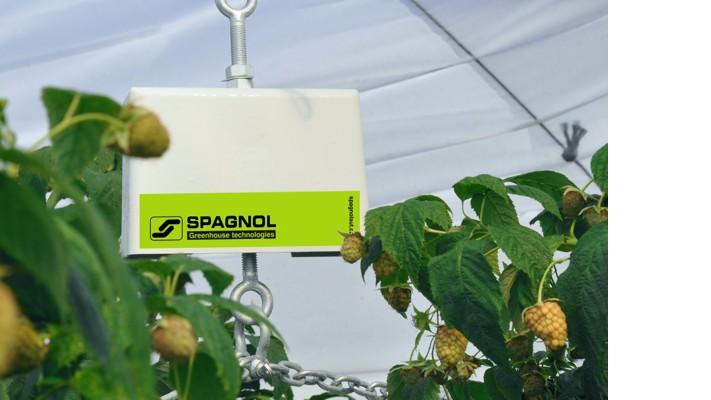 +18%de prodocción – 25% agua y fertilizantes